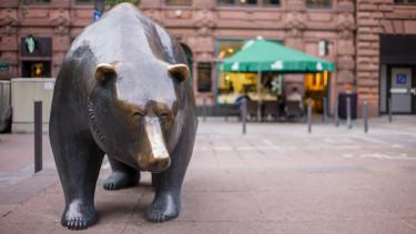 medve bear frankfurt