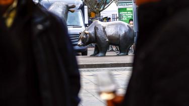 Medve piac