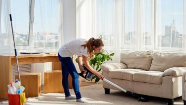 Meglepő, mire jutott egy kutatás: a legjobban kereső amerikai férfiak 70%-ának otthon ülő felesége v