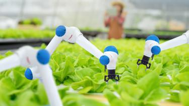 mezőgazdasági robot