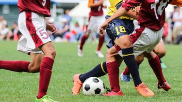 Minden második ember a Földön a foci-vb-t nézte idén nyáron