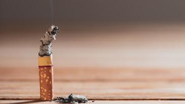 Négymilliárd forintba kerül, de mindent tudni fogunk a cigarettáról