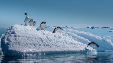 Nem volt még ilyen kicsi az északi-és a déli-sarki tengeri jég, amióta mérik