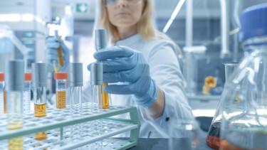 Olyan vírusra bukkantak amerikai kutatók, amely erősíti az immunrendszert