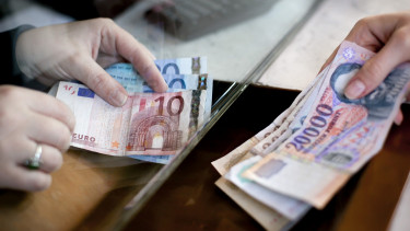 Surprisingly few Hungarians are in favour of euro adoption