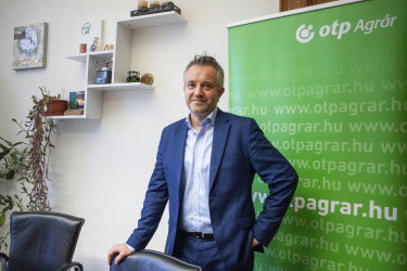 Szabó István OTP