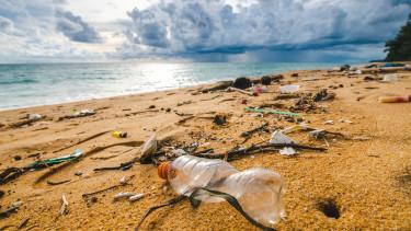 szemét_part_környezetszennyezés