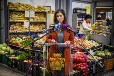 termeloi piacok szentkiralyi alexandra