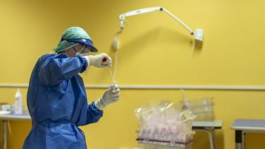 teszt koronavírus