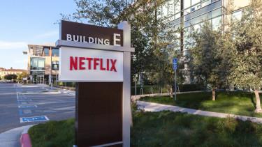 Titokzatos befektető 223 millió dollárt tett a Netflixre és az Alphabetre