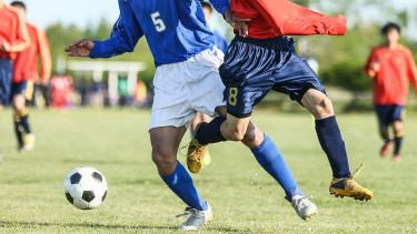Tovább titkolózna a kormány: végleg eldugnák, mennyi adókedvezmény megy sportra