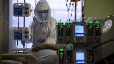 usa koronavírus halálozás lélegeztetőgép