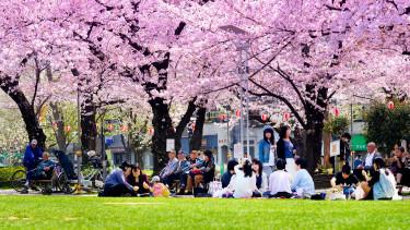 Van egy ország, ahol gazdasági káosszal fenyeget az allergia