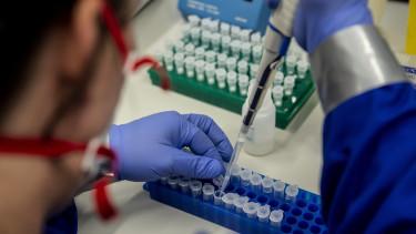 virológus koronavírus járvány pécs