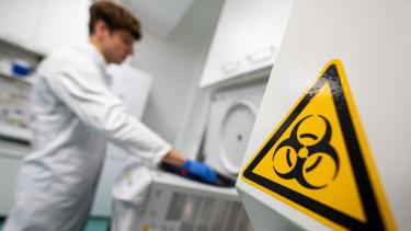 vuhan koronavirus eredet who vizsgalat