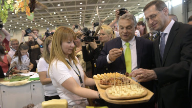 Weaker forint could boost Hungary's EU funding by HUF 580 bn