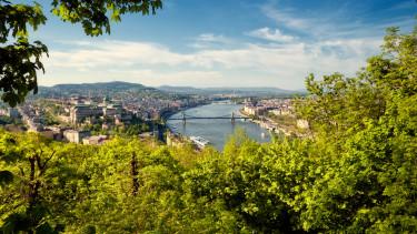 zöld, budapest, fa, duna, vár