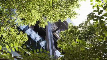zöld épület