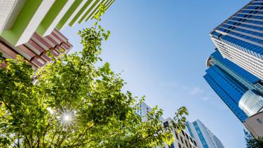 zöld épület ingatlanpiac