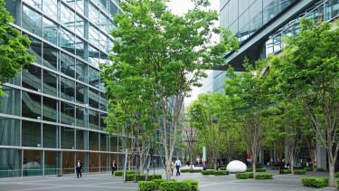 zöld épület munkahely