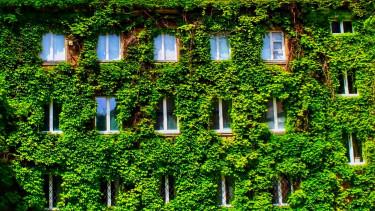 zöld ingatlan