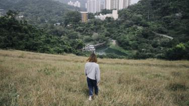 zöld város fenntarthatóság