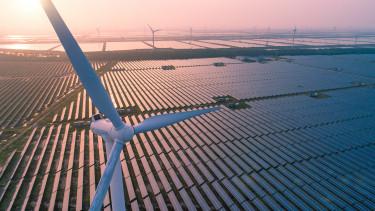 zöld világ környezetvédelem fenntarthatóság
