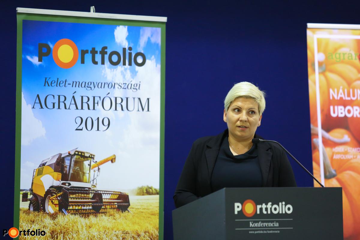 Kovács Nikoletta (ügyvezető, Caravanes Kft.): A Kőröstej Csoport stratégiája: hogyan hódítsuk meg az arab piacot?