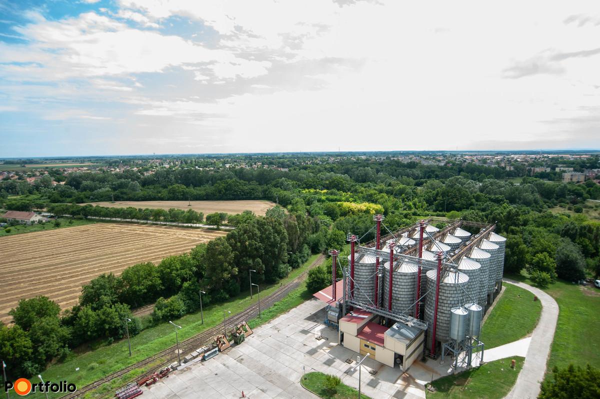A biogabonákat valóban nagyobb arányban igénylik, mint ami Európa keleti felében megszokott, ám ez nem egyenlő a magas sikértartalmú búzával.