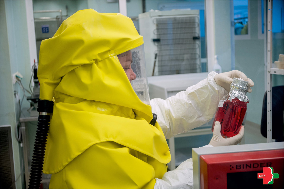 a laboratóriumban létrehozott vírusok