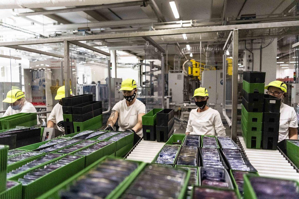 A magyarországi gyárak világszerte több mint negyven országba szállítanak Nestlé terméket, termelésük 80–90 százaléka kifejezetten exportra készül.