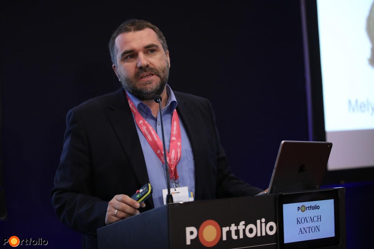 Kovach Anton, vezérigazgató, ShiwaForce.com (Fotó: Stiller Ákos)